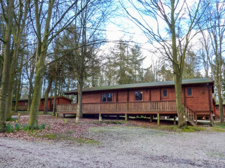 Lodge 50 - Lincolnshire - 954616 - photo 1