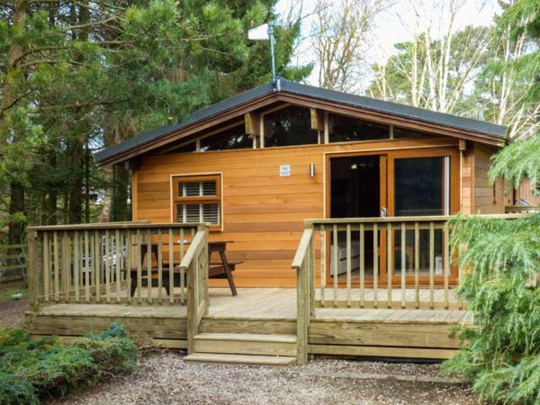 Pine Lodge - Yorkshire Dales - 956056 - photo 1
