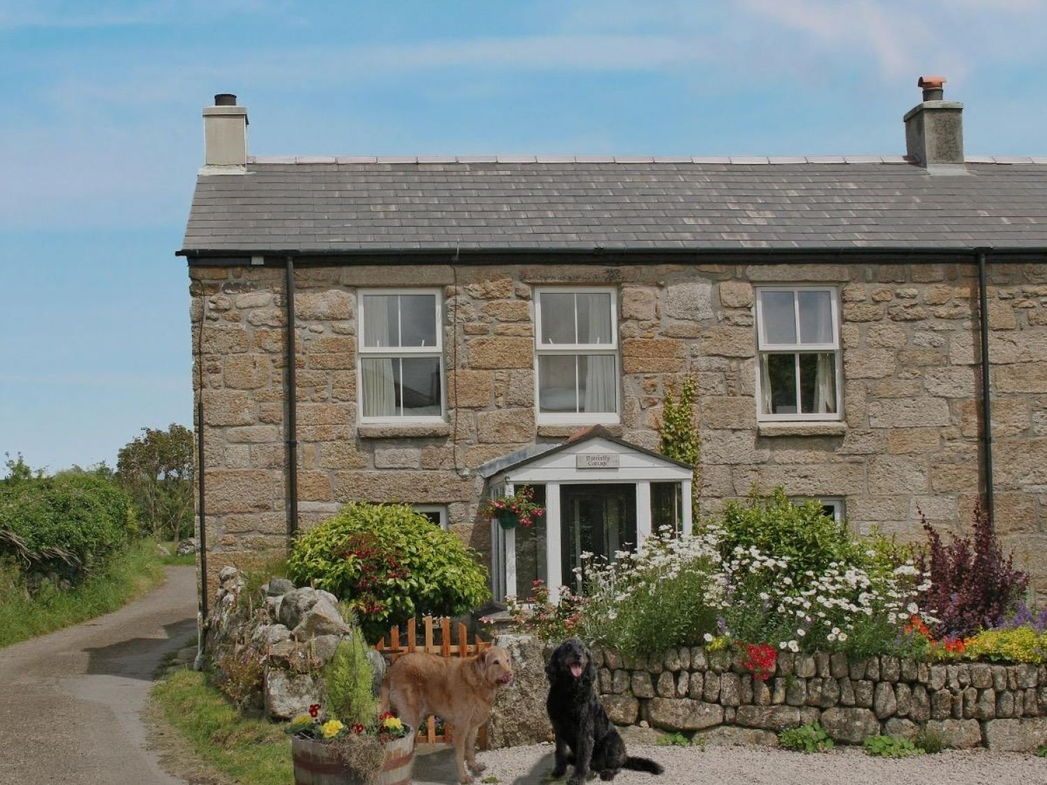 Butterfly Cottage - Cornwall - 959233 - photo 1
