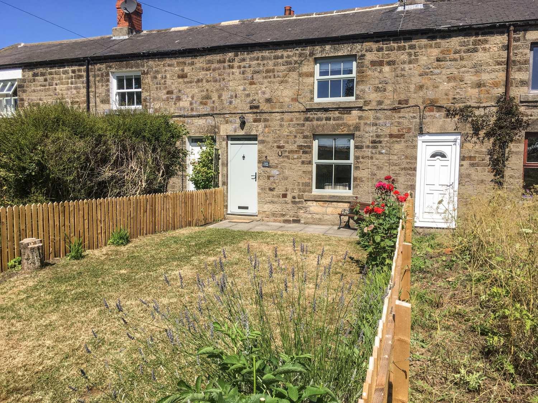 Canny Cottage - Northumberland - 960391 - photo 1