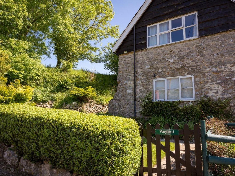 Wagtail Cottage - Devon - 962641 - photo 1
