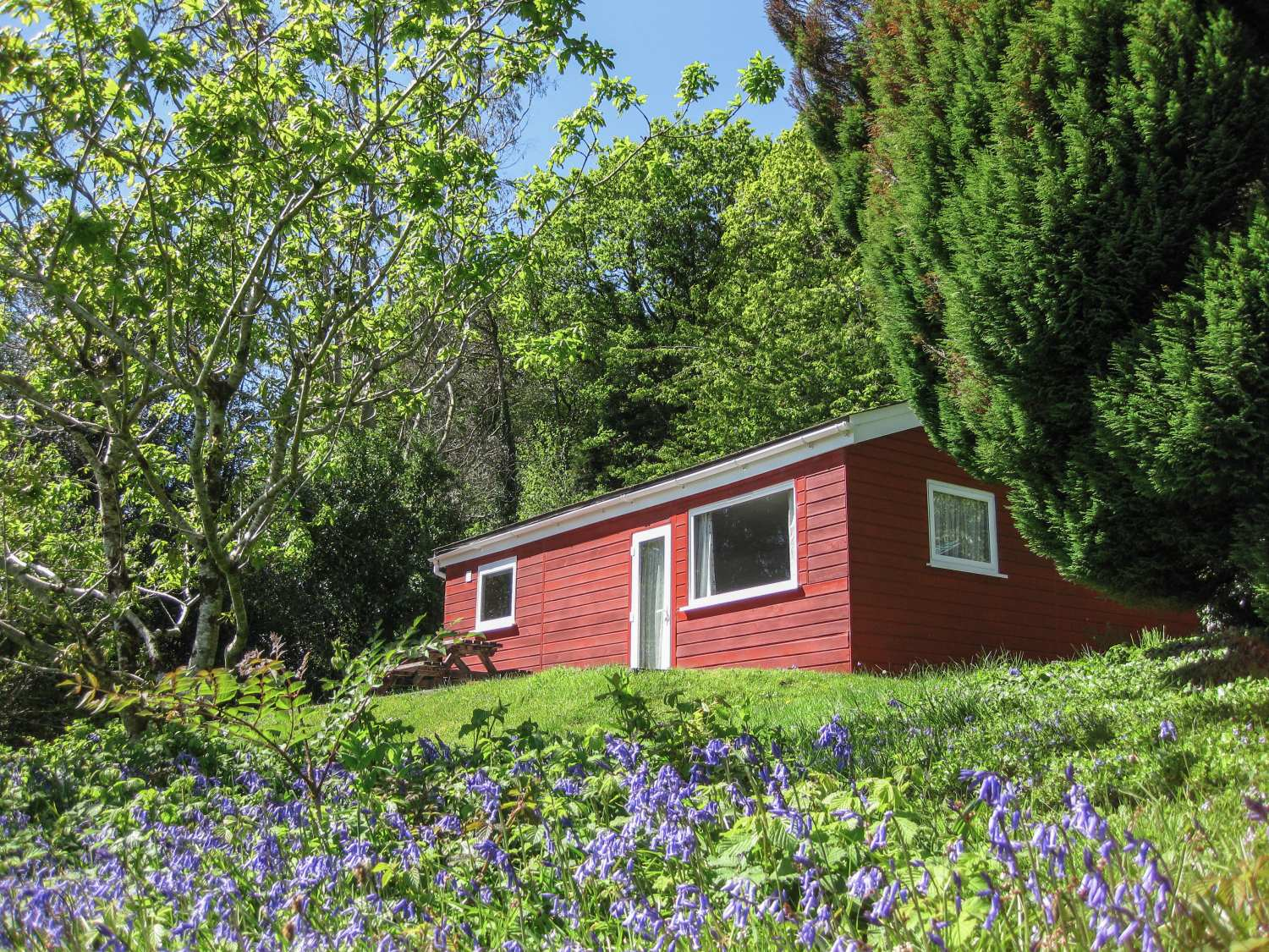 Bluebell Lodge - Cornwall - 962651 - photo 1