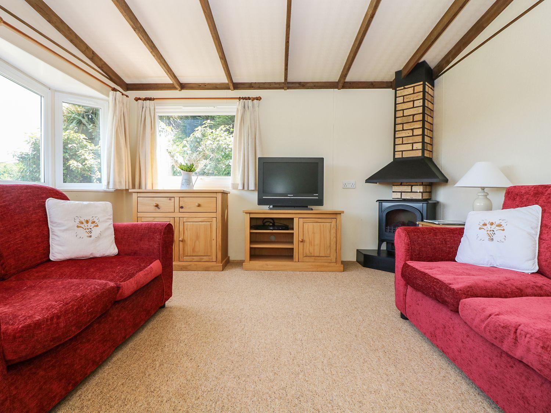 Fern Lodge - Cornwall - 962655 - photo 1