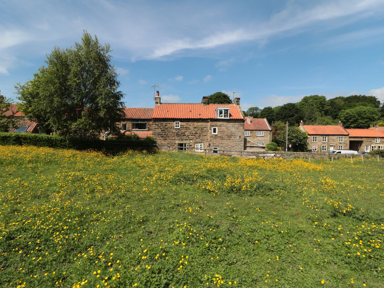 Ivy Cottage - Whitby & North Yorkshire - 967987 - photo 1