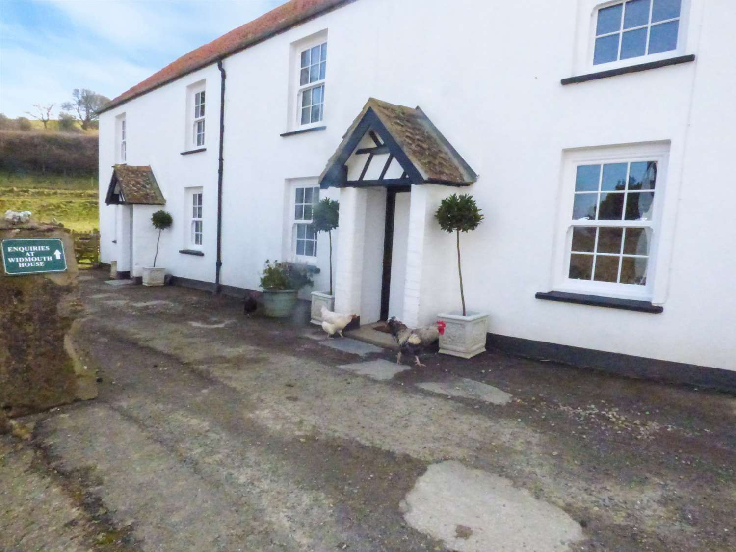 Pheasant Cottage - Devon - 971308 - photo 1