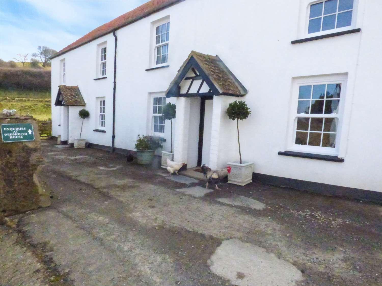 Pheasant Cottage - Devon - 971308 - photo 1