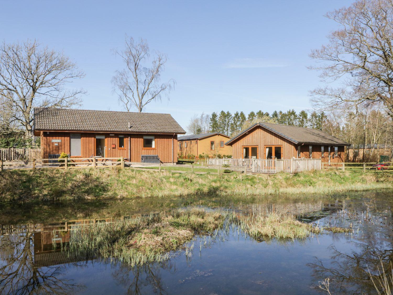 Holmedell - Lake District - 972633 - photo 1