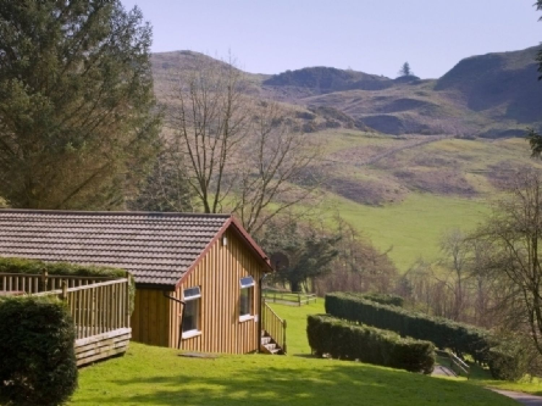 Conifer Lodge - Scottish Highlands - 973050 - photo 1