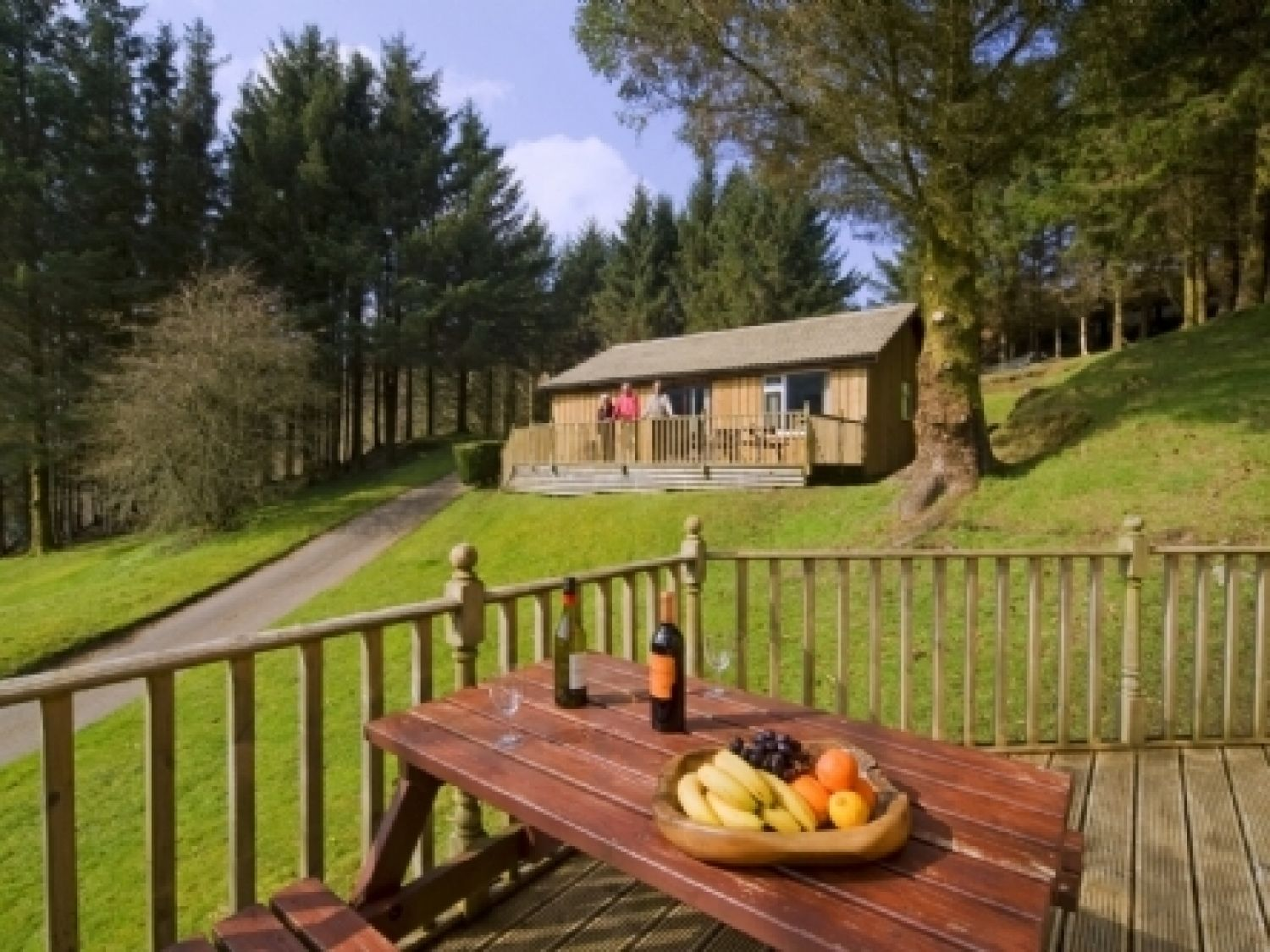 Conifer Lodge - Scottish Highlands - 973051 - photo 1