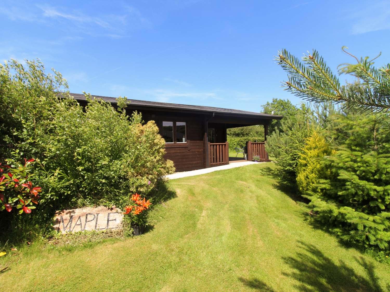 Maple Lodge - Cornwall - 974712 - photo 1
