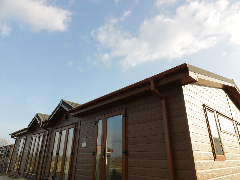 Poppy Lodge - Cornwall - 975547 - photo 1
