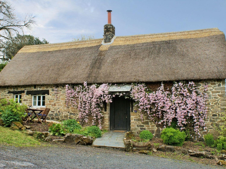 The Garden Cottage - Devon - 975731 - photo 1
