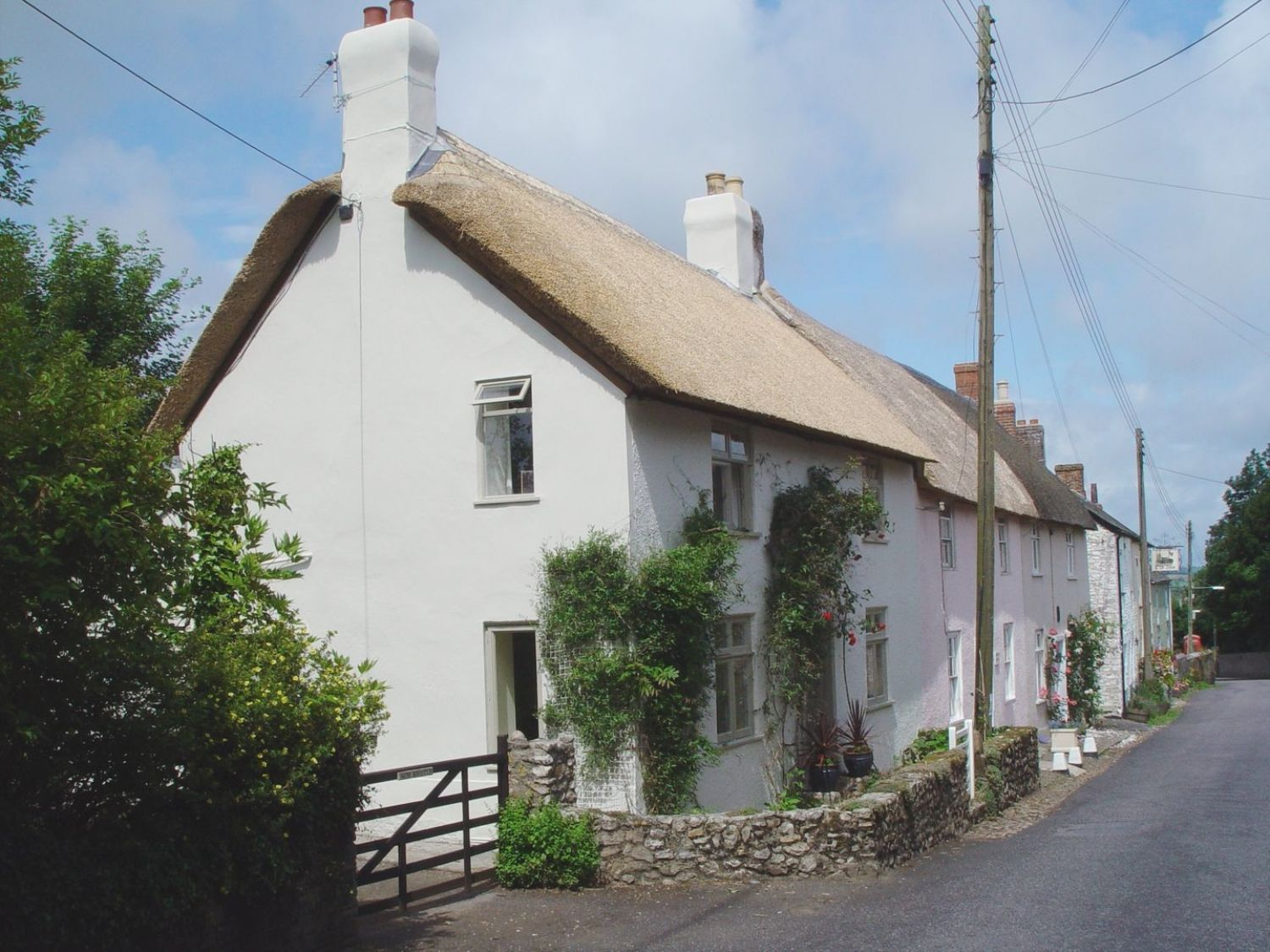 Windwhistle Cottage - Devon - 976016 - photo 1