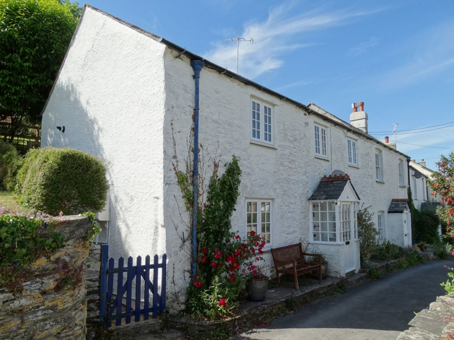 Mollys Cottage - Devon - 976164 - photo 1