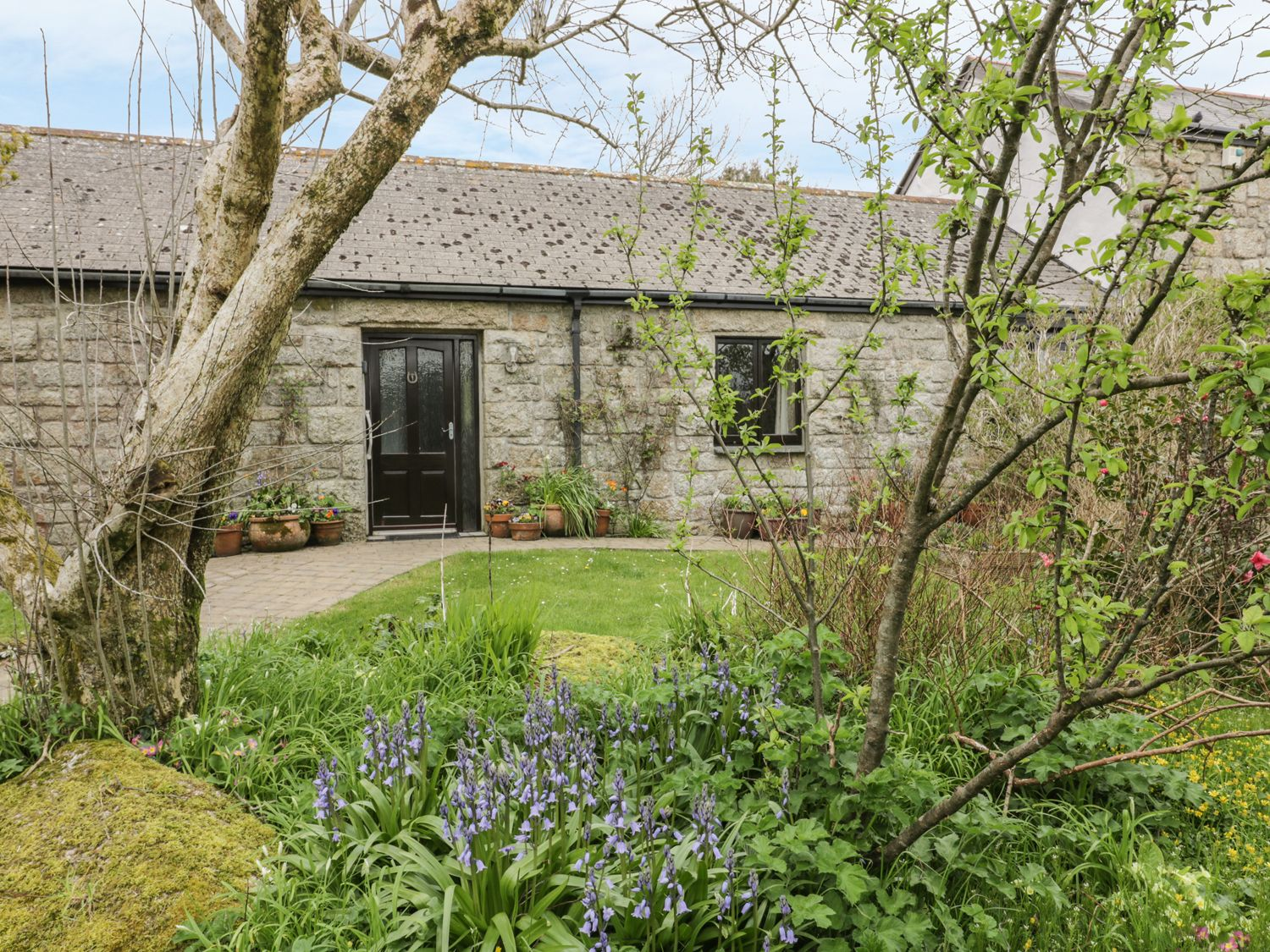 Brunnion Cottage - Cornwall - 977835 - photo 1