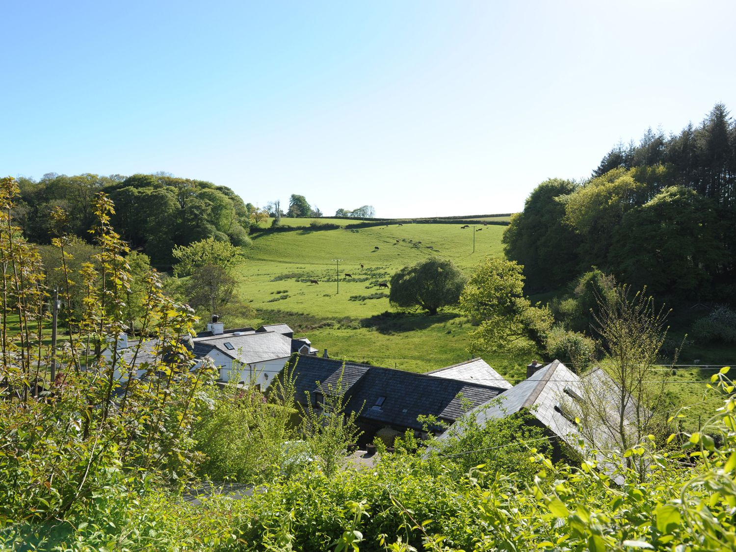 River Cottage - Cornwall - 980030 - photo 1