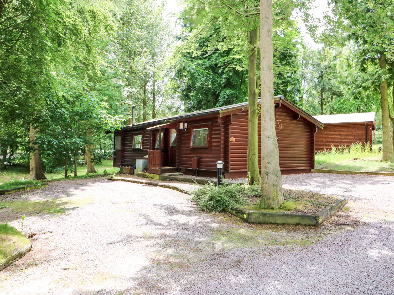 Lodge 8 - Lincolnshire - 981519 - photo 1
