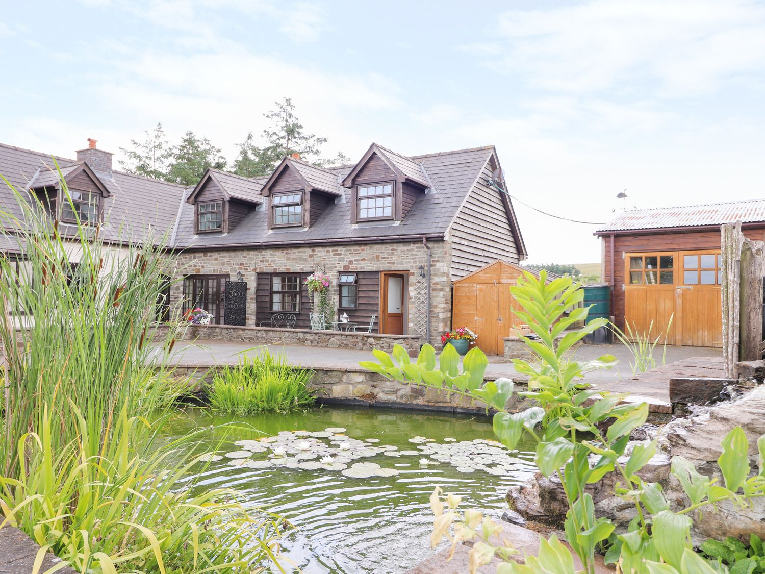 Lily Pond Cottage - Mid Wales - 981897 - photo 1