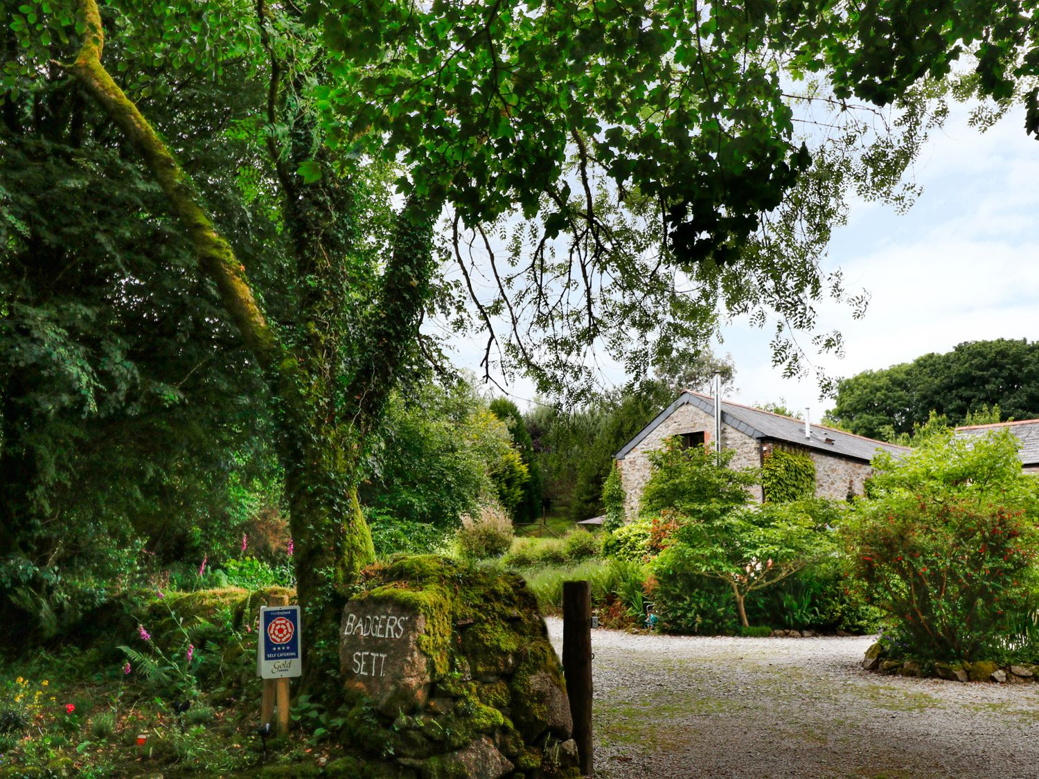 Thyme Cottage - Cornwall - 982901 - photo 1