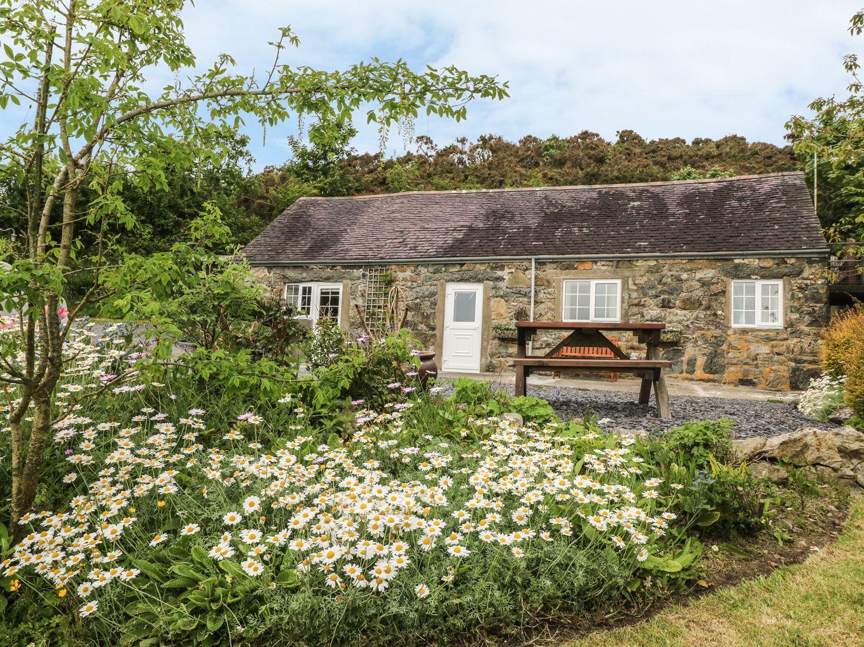 Ty'n Y Muriau Cottage - North Wales - 983185 - photo 1