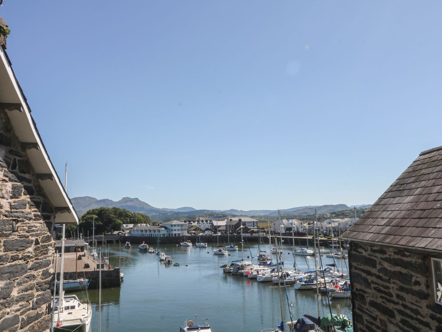Cnicht View - North Wales - 986554 - photo 1