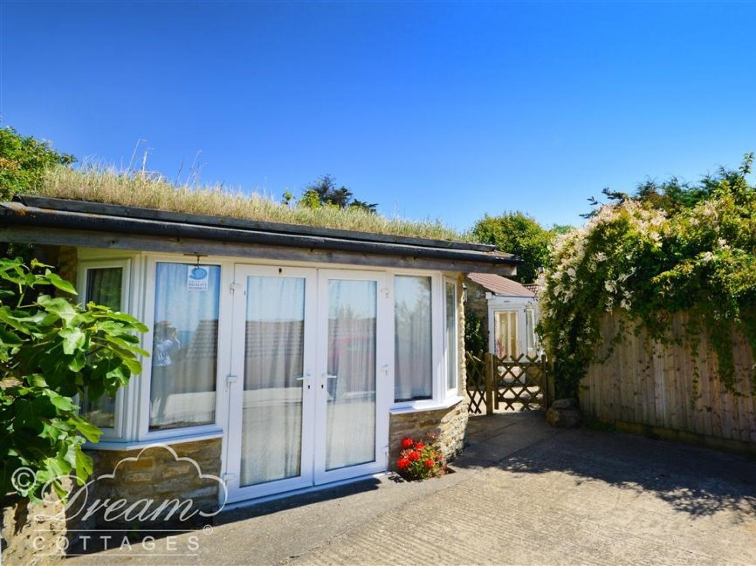 Mimosa Cottage - Dorset - 994408 - photo 1