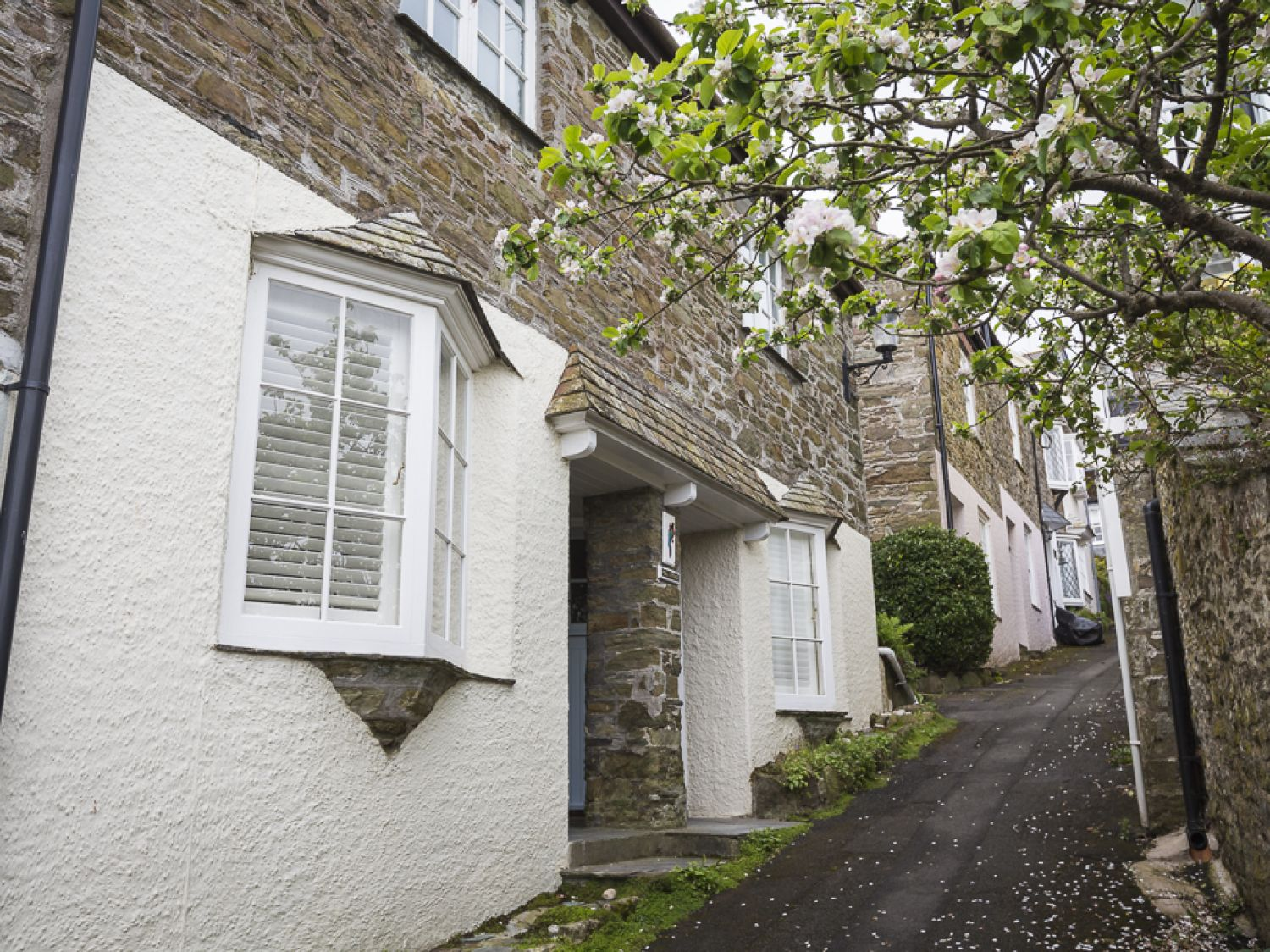 Poll Cottage - Devon - 995713 - photo 1