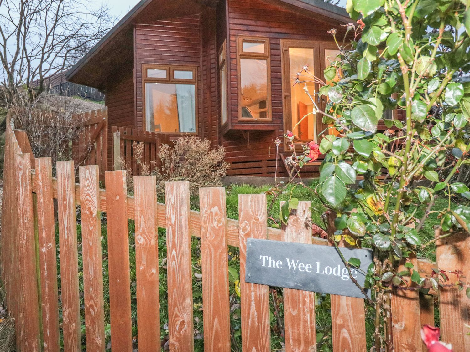 The Wee Lodge - Scottish Lowlands - 997046 - photo 1
