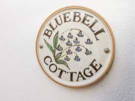 Bluebell Cottage - Devon - 1000574 - thumbnail photo 3