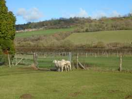 Greenham Cottage - Somerset & Wiltshire - 1000796 - thumbnail photo 24