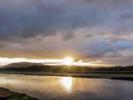 Terns - Scottish Lowlands - 1001951 - thumbnail photo 16