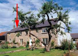 Rock Mill Cottage - Northumberland - 1153 - thumbnail photo 1