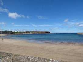 Traquair - Scottish Lowlands - 11846 - thumbnail photo 16