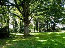 Spinney Retreat - Shropshire - 1191 - thumbnail photo 19
