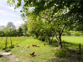 The Barn - North Wales - 12265 - thumbnail photo 17