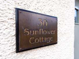 Sunflower Cottage - Northumberland - 1326 - thumbnail photo 4