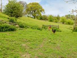 Tyn Y Minffordd - North Wales - 14899 - thumbnail photo 13
