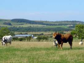The Red Barn - Northumberland - 1562 - thumbnail photo 10