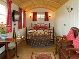 Shepherd's Hut - Shropshire - 17899 - thumbnail photo 8