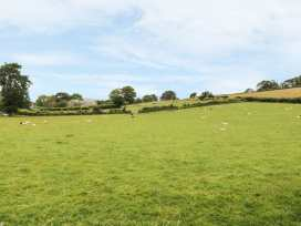 Minffordd Cottage - Mid Wales - 2069 - thumbnail photo 22