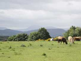 Pilmuir - Scottish Highlands - 22083 - thumbnail photo 23