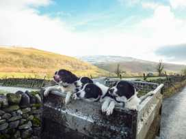 Mill Cottage - Yorkshire Dales - 2224 - thumbnail photo 20