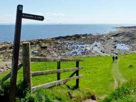 Castle Cliff - Scottish Lowlands - 25277 - thumbnail photo 19