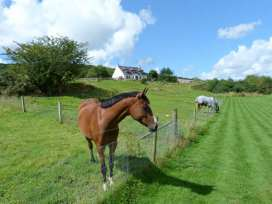 The Byre - Scottish Lowlands - 26255 - thumbnail photo 12