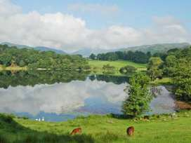 10 Croft Courtyard - Lake District - 26484 - thumbnail photo 9
