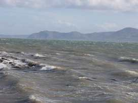Cwt Blawd - Anglesey - 27845 - thumbnail photo 14