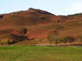 Brackenlea Cottage - Northumberland - 28577 - thumbnail photo 16