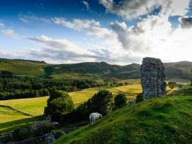 Brackenlea Cottage - Northumberland - 28577 - thumbnail photo 15