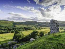 Brackenlea Cottage - Northumberland - 28577 - thumbnail photo 13