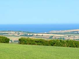 Bluebell - Cornwall - 29355 - thumbnail photo 16